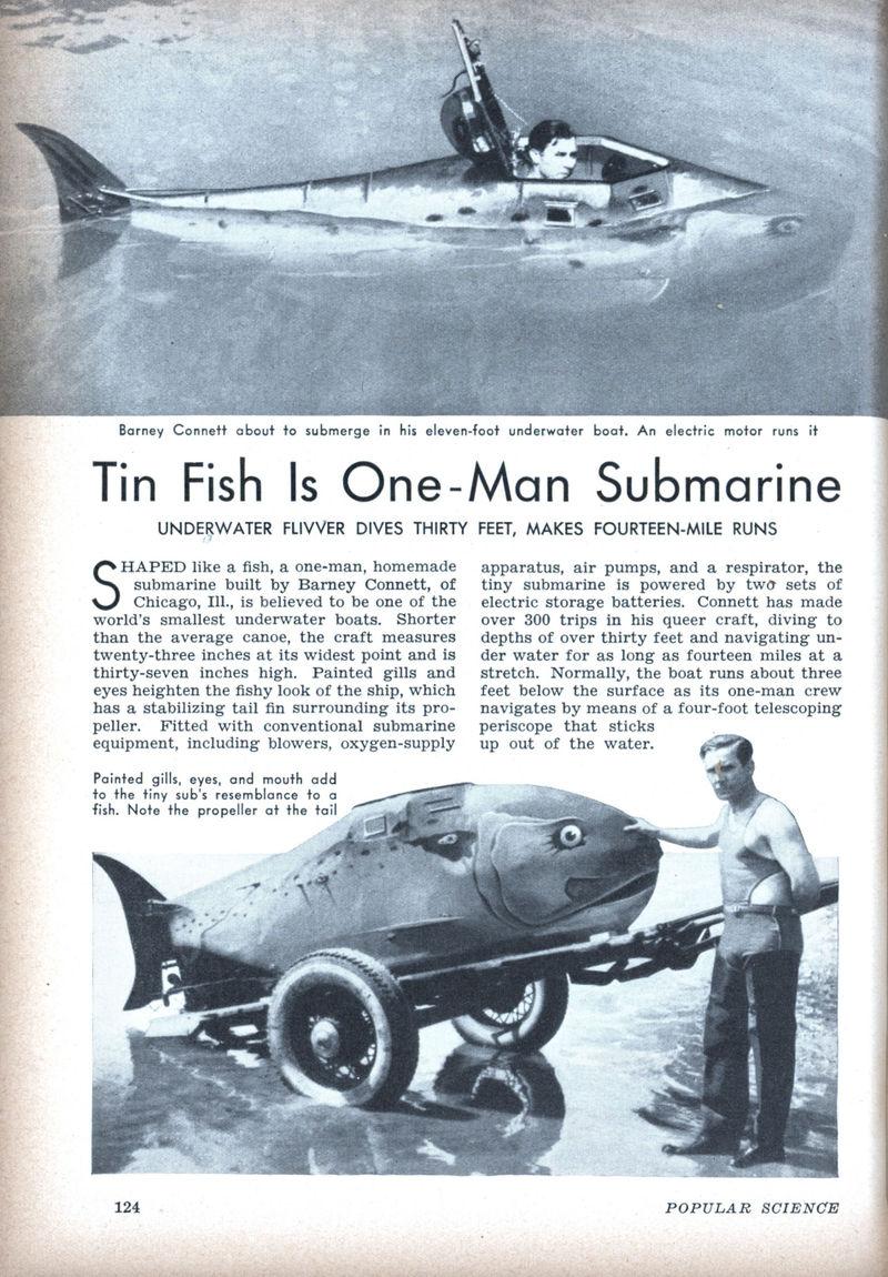 Fish_sub